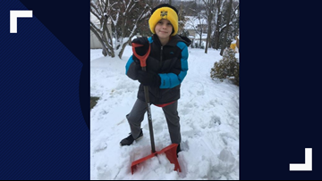 Young boy spent weekend shoveling to raise money for friend's sister with rare disease