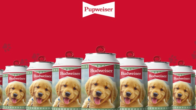 Your dog could be the next face of a Budweiser Holiday Can!