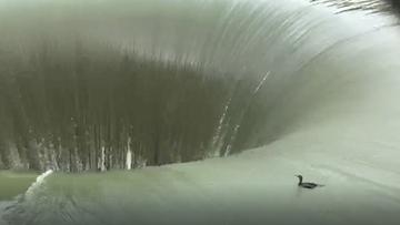 'Glory Hole' at California lake swallows up wayward duck