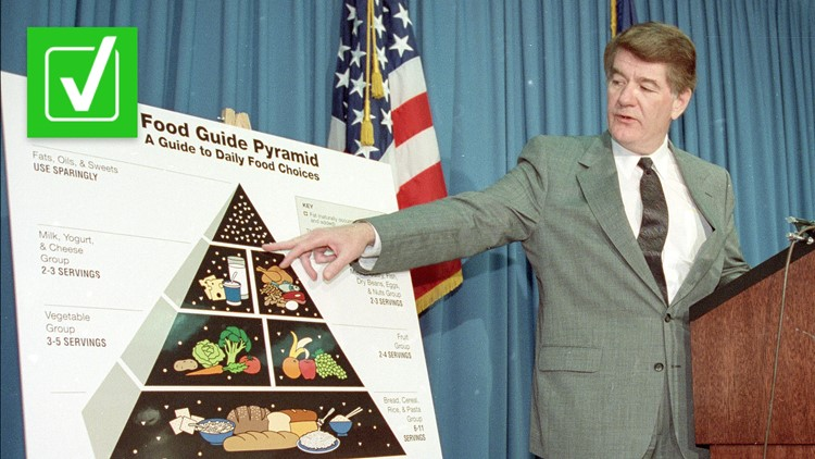 Yes, the food pyramid was an updated version of the USDA's first visual food guide released during World War II