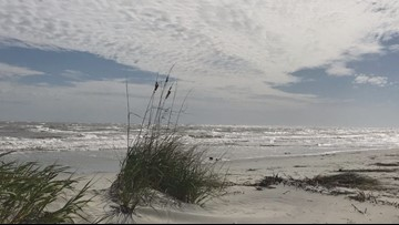 That's no turtle: couple discovers 44 pounds of cocaine on a South Carolina beach