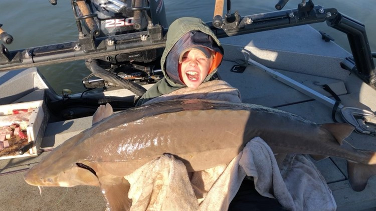 Monster catch! TN boy reels in 79.8 lb. sturgeon