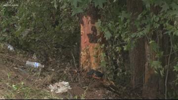 2 South Carolina high school students killed, 2 others hurt in crash