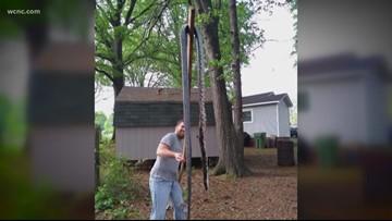 Man finds, kills giant snake on North Carolina property