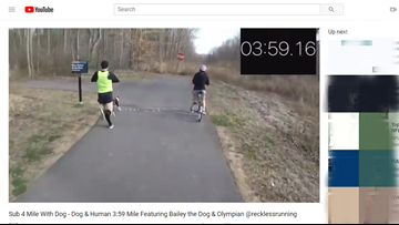Video shows dog, US Olympian run sub 4-minute mile together