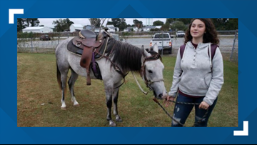 NC Student Rides Horse To School After She Missed The Bus