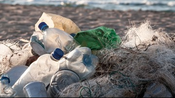 Mutant enzyme can break down plastic bottles in hours, scientists say