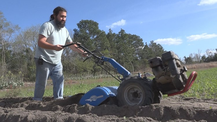 'Things are looking up': Lexington County land steward's CSA saved his business