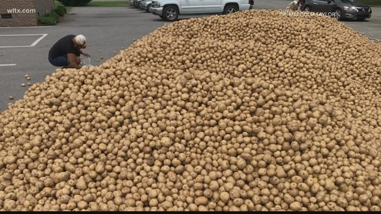 Pastor donates 125,000 pounds of potatoes to Hopkins, Eastover