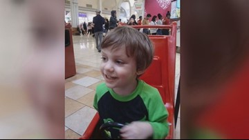 3-year-old boy injured by falling tree dies from his injuries