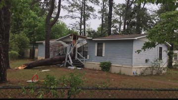 Toddler injured when tree crashes into Sumter home