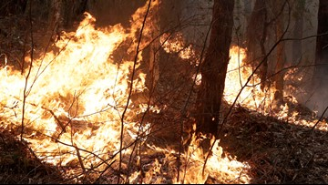 Effects of climate change lengthen wildfire seasons around the world