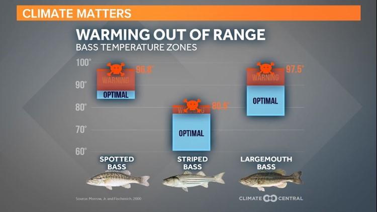 Bass optimal water temperature