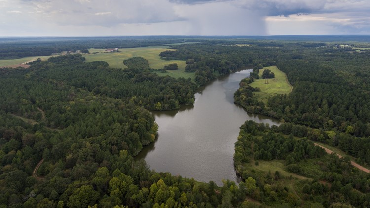 Over 2,200 acres in South Carolina to become public lands through conservation institute