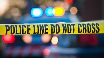 1 dead in single vehicle crash in Lee County