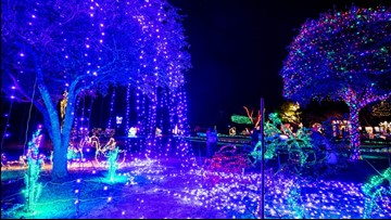 Fantasy of Lights returns to Sumter