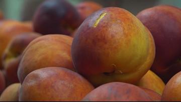 Love and Tradition Sweeten Peach Prep for 60th Annual Lexington County Peach Festival