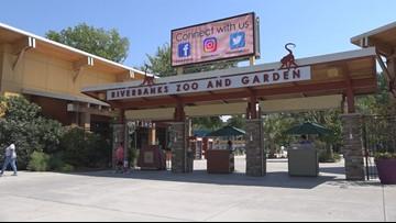 'Boo at the Zoo' kicks off at Riverbanks Zoo & Garden