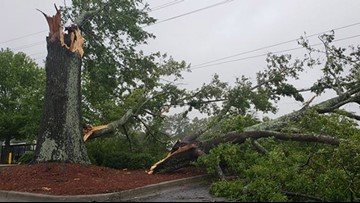HELP: How to report power outages throughout South Carolina