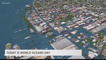 Today is World Oceans Day