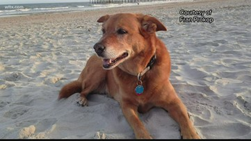 Maxine, dog rescued on LivePD, has passed away
