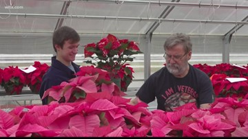 Students selling poinsettias