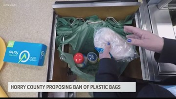 Horry County could consider single-use plastic bag ban