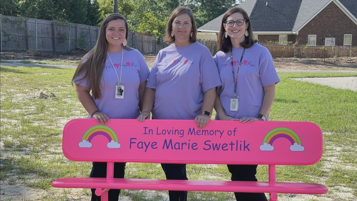 New playground equipment  dedicated in Faye Swetlik's memory at Springdale Elementary