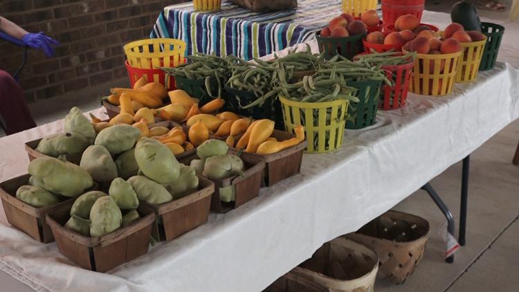 Program helps seniors cut cost at local farmers' markets