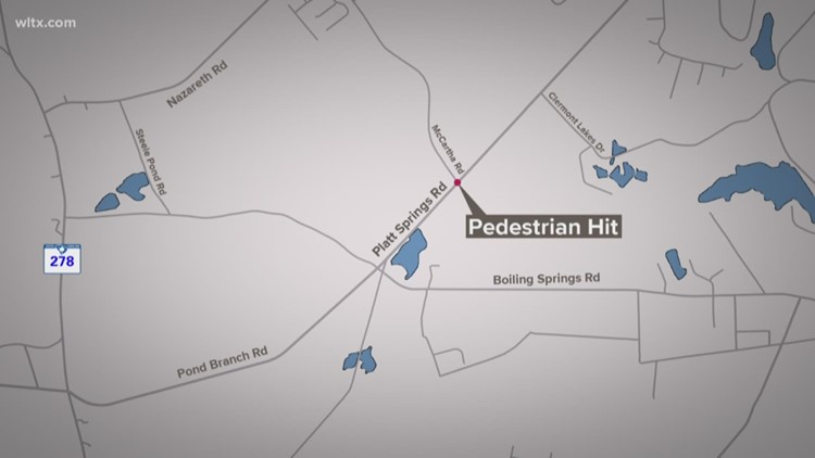 Lexington hit and run blocks Platt Springs road