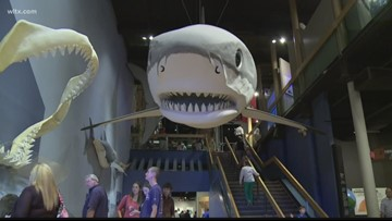 SC State Museum delays reopening, EdVenture to remain closed