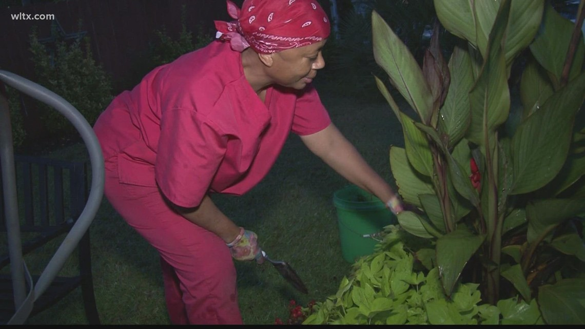 SC woman gardens more than 300 plants in her yard to cope with stress