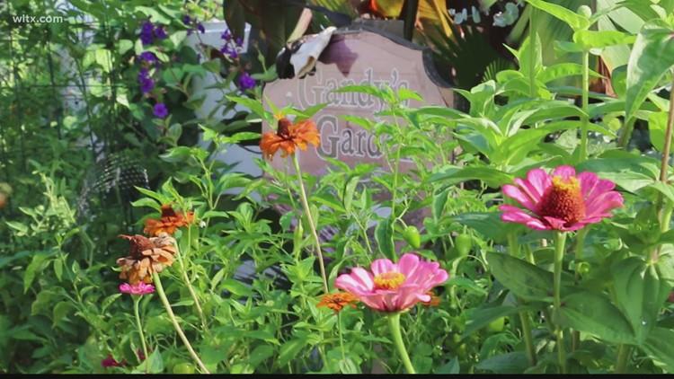 July in Gandy's Garden with Alex Calamia