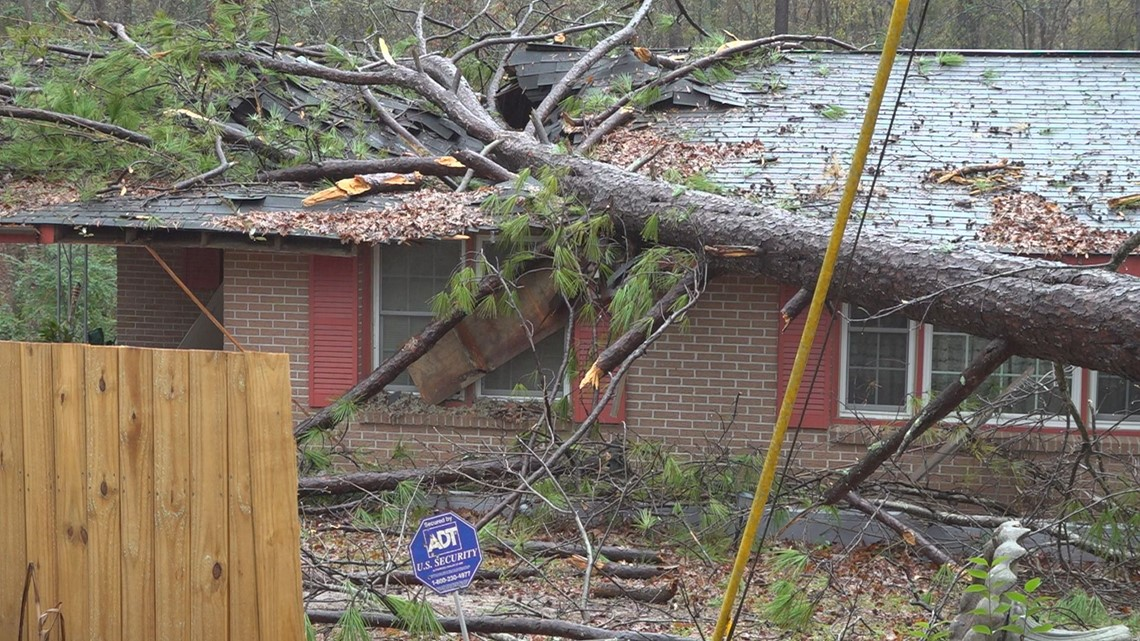 Tree falls on home adding to family's pain