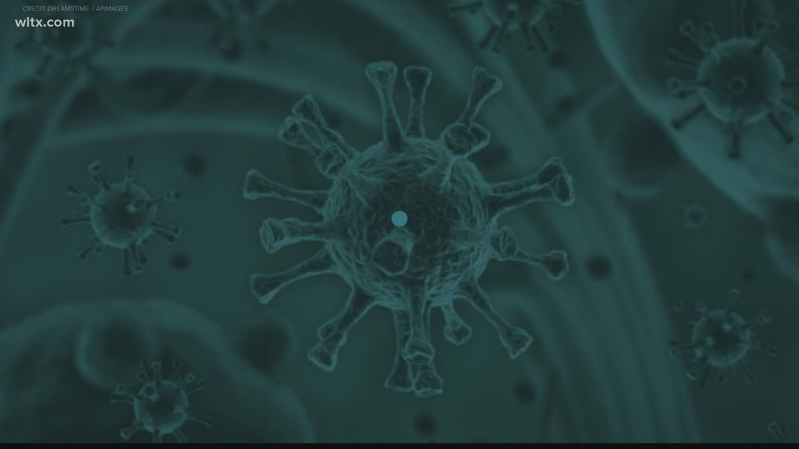 March 6 marks one year since coronavirus was detected in South Carolina