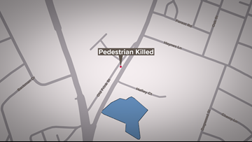 Pedestrian killed after being struck by truck in Lexington County