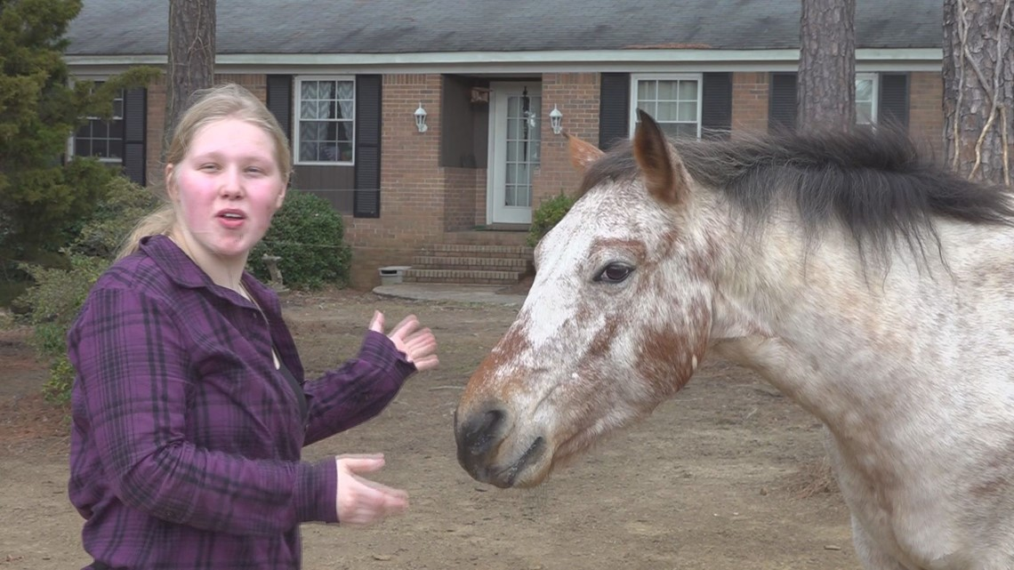 Irmo woman attempts Guinness World Record with her horse