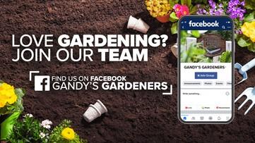 Gandy's Garden at WLTX Celebrates Earth Day 50