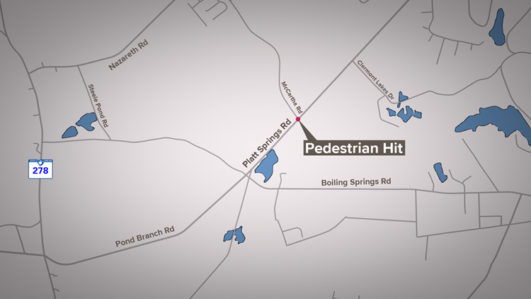 Pedestrian Hit on Platt Springs Road