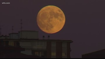 Do full moons really cause changes in people?