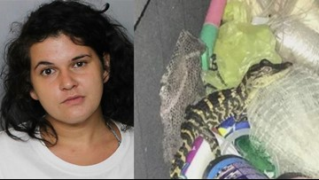 Florida woman who pulled gator from her pants during a traffic stop gets probation