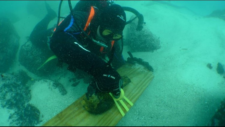 'We have history that hasn't been uncovered' | Slave Wrecks Project shows global industry of slavery