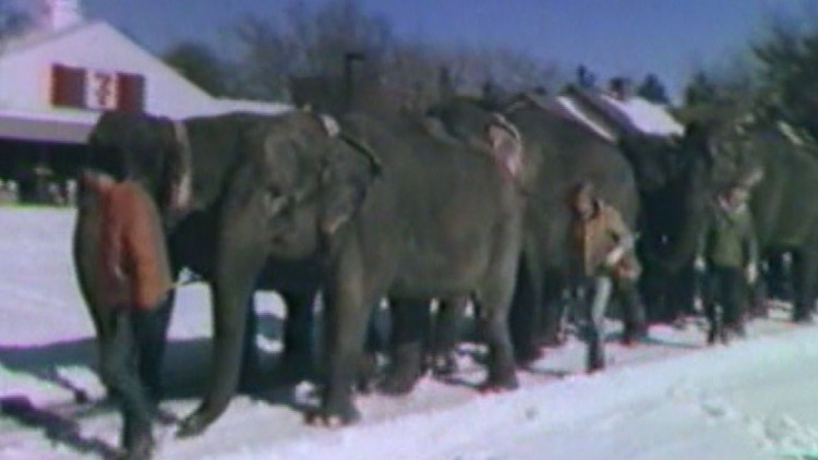 This Week in Weather History: Circus Blizzard of 1980